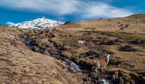 Peru Trekking Guide- More Than Just the Inca Trail 11