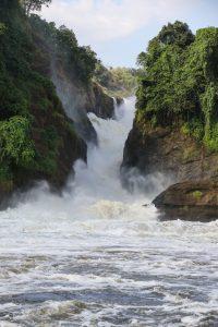 SOLD OUT! Ultimate East Africa Safari - Kenya, Uganda & Rwanda escorted by Anna Bulleid 26 July - 18 August 2020 19