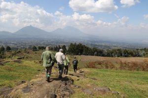 SOLD OUT! Ultimate East Africa Safari - Kenya, Uganda & Rwanda escorted by Anna Bulleid 26 July - 18 August 2020 24
