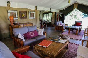 SOLD OUT! Ultimate East Africa Safari - Kenya, Uganda & Rwanda escorted by Anna Bulleid 26 July - 18 August 2020 28
