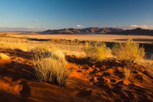 Crooked Compass: Raw Namibia 12 days from $9,986 4
