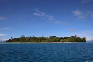 The Island Of Papua New Guinea From The Sea
