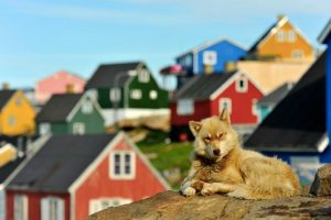 A Taste of Greenland - a 6 day independent tour for 2 or more people from AUD$6,171 3