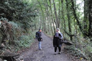 'French Camino' 16-Days: Leon - Astorga to Santiago de Compostela: 21 Sep - 06 Oct 2021 Escorted by Glenyce Johnson - AUD$4,520 1