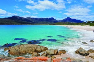 Tasmania's Wild Walks - East, Central & West Tasmania - 07-20 Feb 21; Escorted by Mike Wood. AUD$6,990 ONLY TWO PLACES LEFT! 6