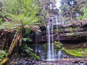Tasmania's Wild Walks - East, Central & West Tasmania - 22 Mar-04 Apr 21; Escorted by Mike Wood. AUD$6,990 2