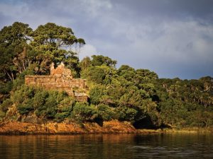 Tasmania's Wild Walks - East, Central & West Tasmania - 07-20 Feb 21; Escorted by Mike Wood. AUD$6,990 ONLY TWO PLACES LEFT! 20