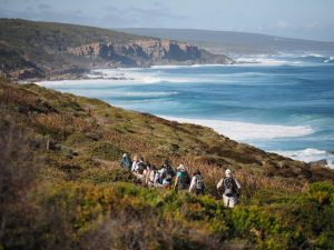 Cape to Cape Track Guided Walking Tour - 8 Days ex Perth, the full 135km from $2,300 3