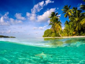 Cocos Keeling Islands: A Perfect Holiday Destination 4